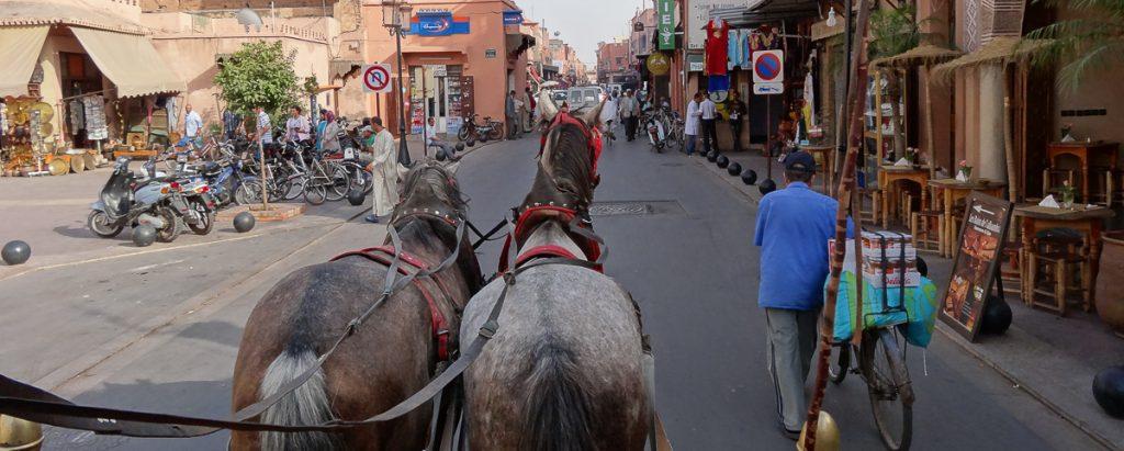 rw-luxury-hotels-resorts-marrakech-jc-rappe-caleche-2-dsc02098