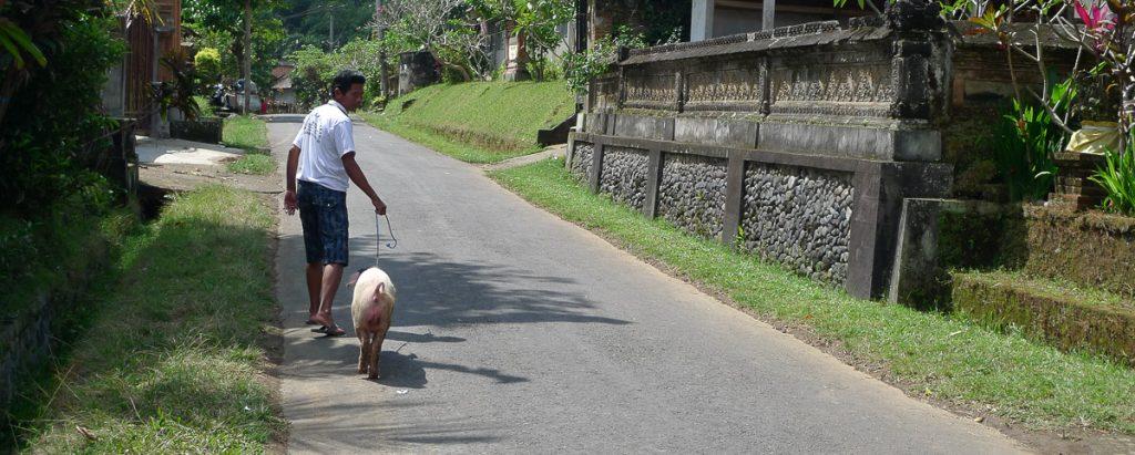 Bali moments de vie